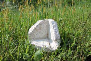 fungal foam